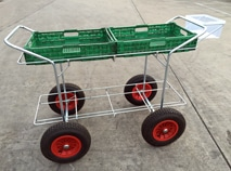 Trolleys for Table Top growing systems